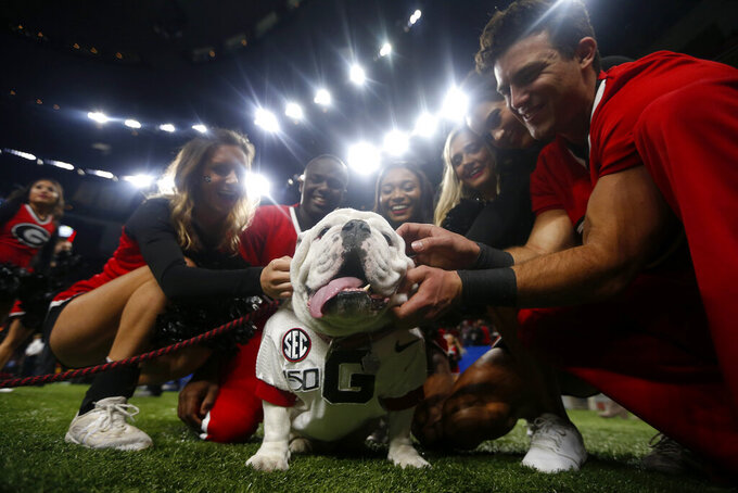 "Georgia cheerleaders pose with the school mascot ""Uga"" before the Sugar Bowl NCAA college football game against Baylor in New Orleans, Wednesday, Jan. 1, 2020. Football is being played in the Power Five conferences, but many of the longstanding traditions that go along with the games are on hold during the pandemic. Georgia's white English bulldog Uga and other live animal mascots won't be in SEC stadiums because of the conference's precautions against coronavirus. (AP Photo/Brett Duke, file)"
