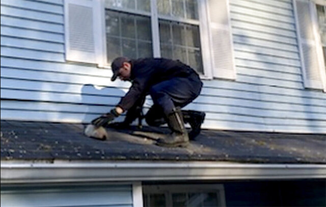 In this Wednesday, April 1, 2020 photo from the Cobb County Fire and Emergency Services, a Cobb County firefighter rescues a kitten from the roof of a Delk Road apartment complex in Cobb County, Ga. According to a post of the department's Facebook, the kitten was nursed back to health after her rescue. (Cobb County Fire and Emergency Services via AP)