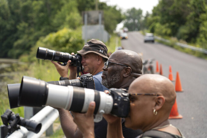 RJ Jones, center, of Southfield and his wife Cheryl Jones have their cameras ready while standing with others along the roadway along the Koch Warner Drain on Saline-Milan Road in Saline, Mich., on Monday, July 19, 2021 while trying to get a photo of a roseate Spoonbill that has been hanging out in the waterway. The bird typically lives in the Gulf Coast region. (Ryan Garza/Detroit Free Press via AP)