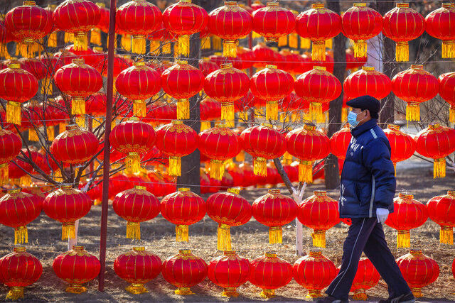 A man wearing a face mask to protect against the spread of the coronavirus walks past a display of lanterns at a public park in Beijing, Tuesday, Jan. 5, 2021. China has designated parts of Hebei province near Beijing as a coronavirus high danger zone after 14 new cases of COVID-19 were found. (AP Photo/Mark Schiefelbein)