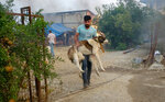 A man carries his dog he rescued from their burning house in a village as wildfire continue to rage the forests near the Mediterranean coastal town of Manavgat, Antalya, Turkey, Thursday, July 29, 2021. At least three people were killed and dozens of people were hospitalized in southern Turkey after strong winds fanned two separate forest fires, officials said Thursday. A wildfire that broke out Wednesday near the Mediterranean coastal resort town of Manavgat, in Antalya province, had largely been contained, Agriculture and Forestry Minister Bekir Pakdemirli said. (IHA via AP)
