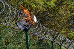 "In this Sept. 4, 2019 photo, a jacket left by migrants burns in the razor-wire at the border fence between Croatia and Slovenia in the village of Radovica, eastern Slovenia. The European Union country of Slovenia has seen the rise of an anti-migrant movement called the ""home guards"