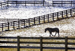 In this Monday, Nov. 11, 2019 photo, snow partially covers a pasture in rural Bangor, Wis. as a horse wanders in a fenced coral. (Peter Thomson/La Crosse Tribune via AP)