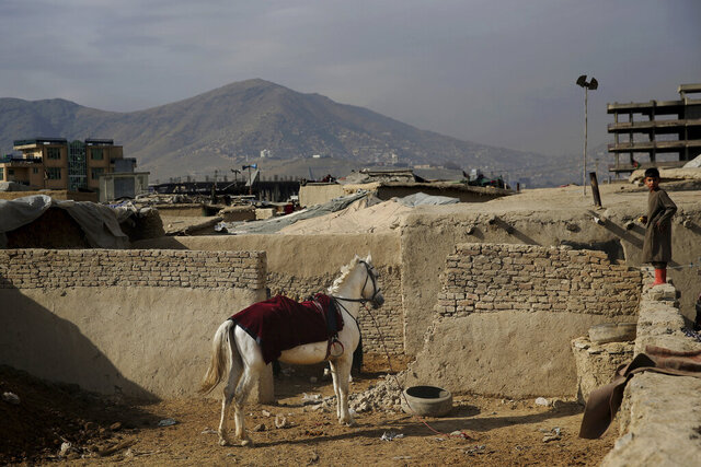 An Afghan boy stands on a wall near a horse tied up at a camp for internally displaced people in Kabul, Afghanistan, Monday, Dec. 9, 2019. Tens of thousands of internally displaced Afghans live in camps, which lack basic facilities, across Afghanistan. (AP Photo/Altaf Qadri)