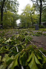 Tree branches mix with downed utility lines in this northeast Jackson, Miss., neighborhood, following a bout of high winds and severe weather, Tuesday afternoon, May 4, 2021. The severe weather was not unexpected, since the state was hit with a number of tornadoes on Sunday. (AP Photo/Rogelio V. Solis)