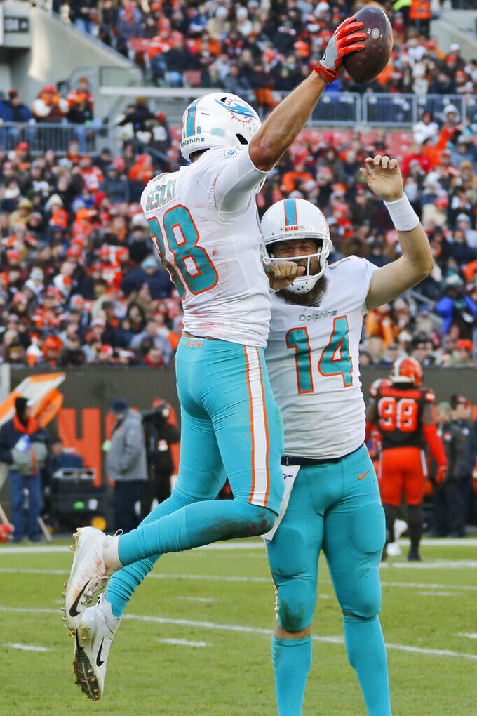 Miami Dolphins tight end Mike Gesicki (88) and quarterback Ryan Fitzpatrick (14) celebrate after Gesicki scored an 11-yard touchdown during the second half of an NFL football game against the Cleveland Browns, Sunday, Nov. 24, 2019, in Cleveland. (AP Photo/Ron Schwane)