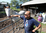 This photo taken Sept. 25, 2019, shows Chris Reder, of DTOM/22 Ranch, interacting with Max, a therapy horse he uses to work with Veterans. (John Davis/Aberdeen American News via AP) **NOT AN AP PHOTO MEMBER**