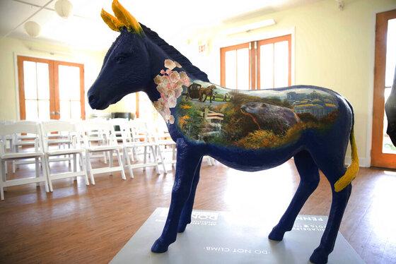DEM 2016 Convention Donkeys