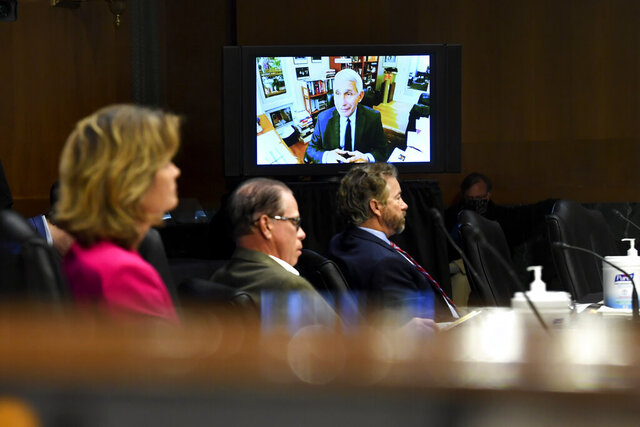Senators listen as Dr. Anthony Fauci, director of the National Institute of Allergy and Infectious Diseases, speaks remotely during a virtual Senate Committee for Health, Education, Labor, and Pensions hearing, Tuesday, May 12, 2020 on Capitol Hill in Washington.   (Toni L. Sandys/The Washington Post via AP, Pool)