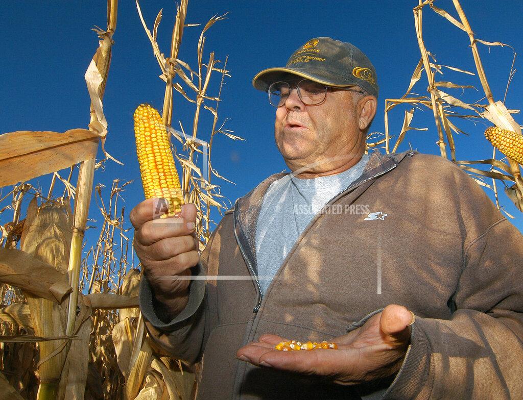 Ethanol Losing Grassland