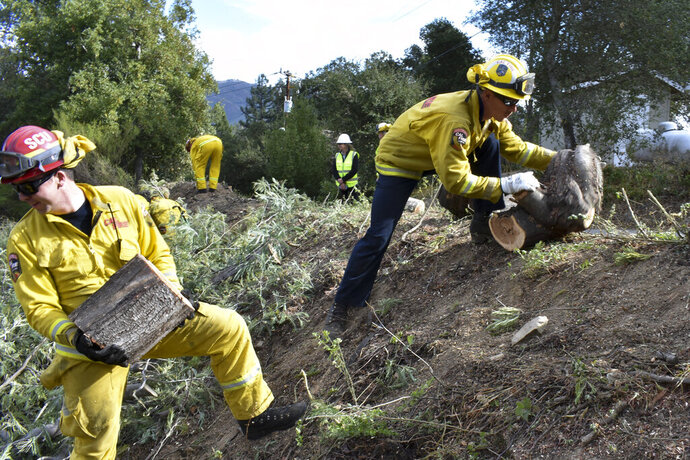 A fire prevention crew hauls away sections of a tree they cut down Wednesday, Nov. 20, 2019, near Redwood Estates, Calif. Authorities are rushing to clear vegetation in high-risk communities after fires killed 149 people and destroyed almost 25,000 homes over the past three years. (AP Photo/Matthew Brown)