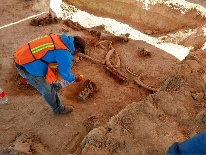 In this undated photo released on May 21, 2020 by Mexico's National Institute of Anthropology and History (INAH), an archaeologist works at the site where bones of about 60 mammoths were discovered at the old Santa Lucia military airbase just north of Mexico City. Institute archaeologist Pedro Sánchez Nava said the giant herbivores had probably just got stuck in the mud of an ancient lake, once known as Xaltocan and now disappeared. (INAH via AP)