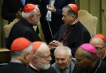 FILE - In this Feb. 23, 2019, file photo, Cardinal Blase J. Cupich of Chicago, right, talks with Cardinal Reinhard Marx of Munich at the Vatican. Germany's Catholics reacted enthusiastically when bishops in the Amazon called for the ordination of married men as priests to address the clergy shortage in that region, although there is resistance elsewhere. Marx, chairman of the bishops conference, expressed support for the Amazon Synod's proposal, but stopped short of calling for a global recognition of married priests. (AP Photo/Alessandra Tarantino, File)