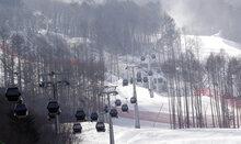 South Korea Restoring Forest