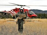 FILE - In this Feb. 13, 2019, photo provided by the U.S. Fish and Wildlife Service, a member of the Mexican gray wolf recovery team carries a wolf captured during an annual census near Alpine, Ariz. Mexican gray wolves have been blamed for killing nearly as many cows and calves in the first four months of 2019 as they did all of last year. Federal wildlife managers have documented 88 livestock kills from January through April in New Mexico and Arizona. Nearly 100 were reported for all of 2018. (Mark Davis, U.S. Fish and Wildlife Service via AP)