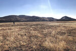 In this Dec. 31, 2018 photo, a man takes photos of bison in the Wichita Mountains Wildlife Refuge, in Comanche County, Okla. The U.S. Fish and Wildlife Service is directing dozens of wildlife refuges including this one to make sure hunters and others have access despite the government shutdown, according to an email obtained Wednesday by The Associated Press. (AP Photo/Adam Kealoha Causey)