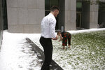 A man and woman collect golfball-sized hail on the grounds of Parliament House in Canberra, Australia, after a storm battered the Australian capital, Monday, Jan. 20, 2020. (AP Photo/Rod McGuirk)