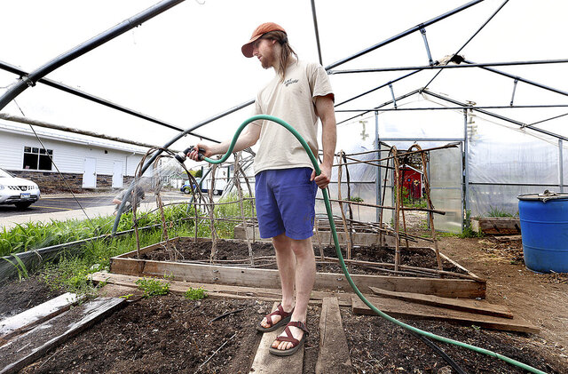 In a May 1, 2020 photo, University of Wisconsin-La Crosse education major Alex Keller tends to plants in the hoop house at the Washburn Community Garden in La Crosse, Wis. Instead filling his graduation requirements by student teaching in the classroom, Keller is working for GROW, the La Crosse nonprofit group that connects children with nature and healthy food. (Peter Thomson/La Crosse Tribune via AP)