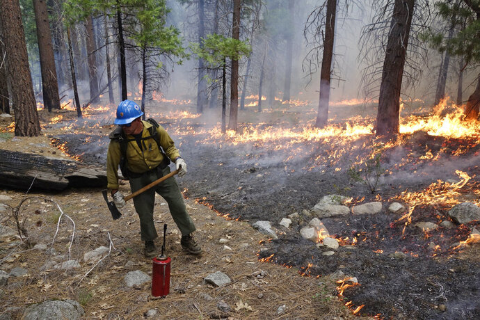 In this June 11, 2019 photo, firefighter Matthew Dunagan stands watch as flames spread during a prescribed fire in Cedar Grove at Kings Canyon National Park, Calif. The prescribed burn, a low-intensity, closely managed fire, was intended to clear out undergrowth and protect the heart of Kings Canyon National Park from a future threatening wildfire. The tactic is considered one of the best ways to prevent the kind of catastrophic destruction that has become common, but its use falls woefully short of goals in the West. (AP Photo/Brian Melley)