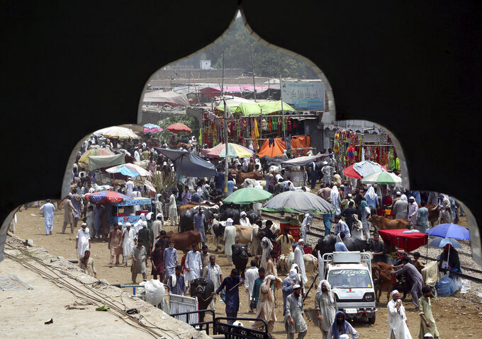 People visiting a cattle market to buy animals for the upcoming Muslim Eid al-Adha, or Feast of Sacrifice holiday, are seen through an arch of a nearby building, in Peshawar, Pakistan, Sunday, July 18, 2021. Eid al-Adha, the most important Islamic holiday, marks the willingness of the Prophet Ibrahim, Abraham to Christians and Jews, to sacrifice his son. (AP Photo/Muhammad Sajjad)