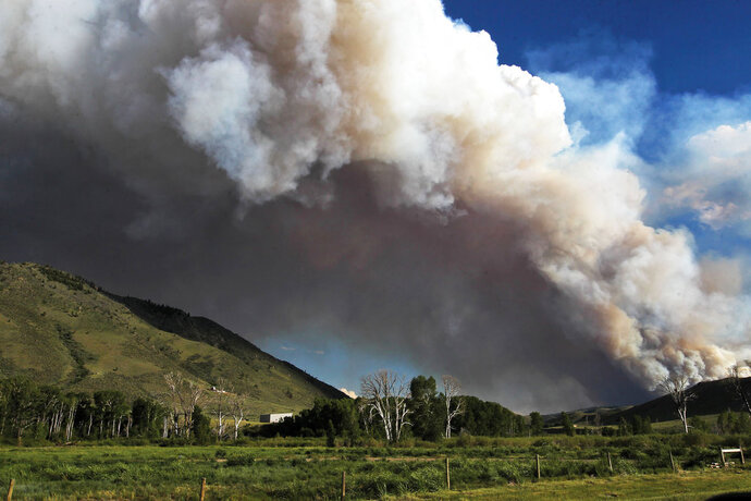 Smoke from a wildfire can be seen rising from the Medicine Bow National Forest near Woods Landing, Wyo., Wednesday, June 13, 2018. Several thousand people in Colorado and Wyoming fled multiple wildfires scorching the drought-stricken U.S. West on Wednesday. (Shannon Broderick/Laramie Boomerang via AP)