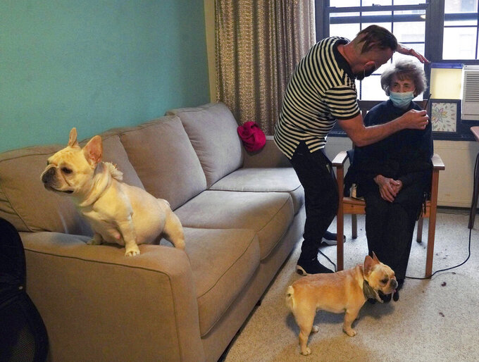 Roberto Novo, left, styles the hair of Madelon Spier while his two French bulldogs keep them company in an apartment Wednesday, May 5, 2021 in New York. Novo started offering older clients free haircuts during the coronavirus pandemic. (AP Photo/Emily Leshner)