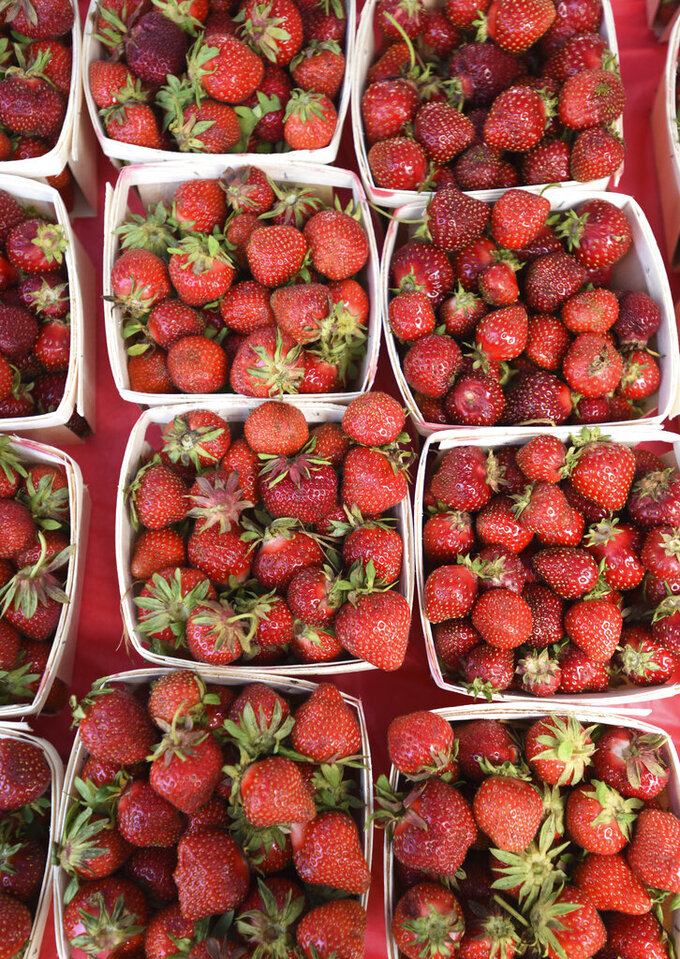Strawberries sit ready for sale Friday, June 11, 2021, during the opening of the Hartford Strawberry Festival, held at Ely Park in downtown Hartford, Mich. The annual festival returned after being cancelled last year due to the pandemic.(Don Campbell/The Herald-Palladium via AP)