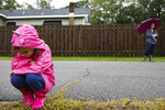 Nora Wood, 5, braves a light rain from Hurricane Sally to check on an ant mound in her low-lying Pascagoula, Miss., neighborhood Tuesday morning, Sept. 15, 2020. Wood wanted to make sure the ants were okay and had not been washed away. (Lukas Flippo/The Sun Herald via AP)