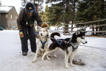 Dog-sledding guide Tim Thiessen gives his huskies a pat after a trail run on Thursday, Jan. 16, 2020, at Good Times Adventures in Breckenridge, Colo. (Liz Copan/Summit Daily News via AP)