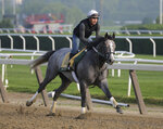 Exercise rider Joe Ramos rides Tacitus during a workout at Belmont Park in Elmont, N.Y., Thursday, June 6, 2019. The 151st Belmont Stakes horse race will be run on Saturday, June 8, 2019. (AP Photo/Seth Wenig)