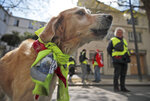 FILE - In this April 13, 2019 file photo, a dog wears a yellow vest during a demonstration in Paris. Several hundreds of people gathered in Paris for the twenty-second Saturday of protests. France's yellow vest protesters remain a force to be reckoned with five months after their movement started, and as President Emmanuel Macron announces his responses to their grievances. It includes people across political, regional, social and generational divides angry at economic injustice and the way President Emmanuel Macron is running France. (AP Photo/Christophe Ena, FILE)