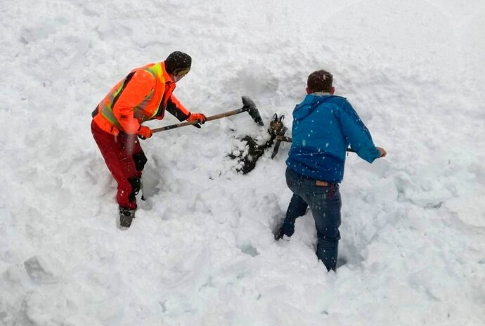 The photo provided by OEBB (Railway Austria) shows railroad employees rescuing a chamois, a type of goat-antelope, that was buried in a snowdrift at the Gesaeuse national park in central Austria, Wednesday, Jan. 9, 2019. (OEBB/Johannes Gottsbacher via AP)