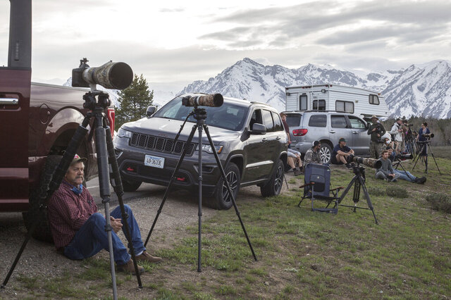 In this Monday, May 18, 2020 photo, wildlife watchers post up near Pilgrim Creek hoping for a chance to see the famed grizzly bear 399 and her four cubs at Grand Teton National Park, Wyo.(Ryan Dorgan/Jackson Hole News and Guide via AP)