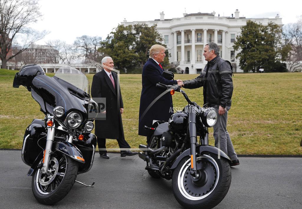 Trump 100 - 100 Photos