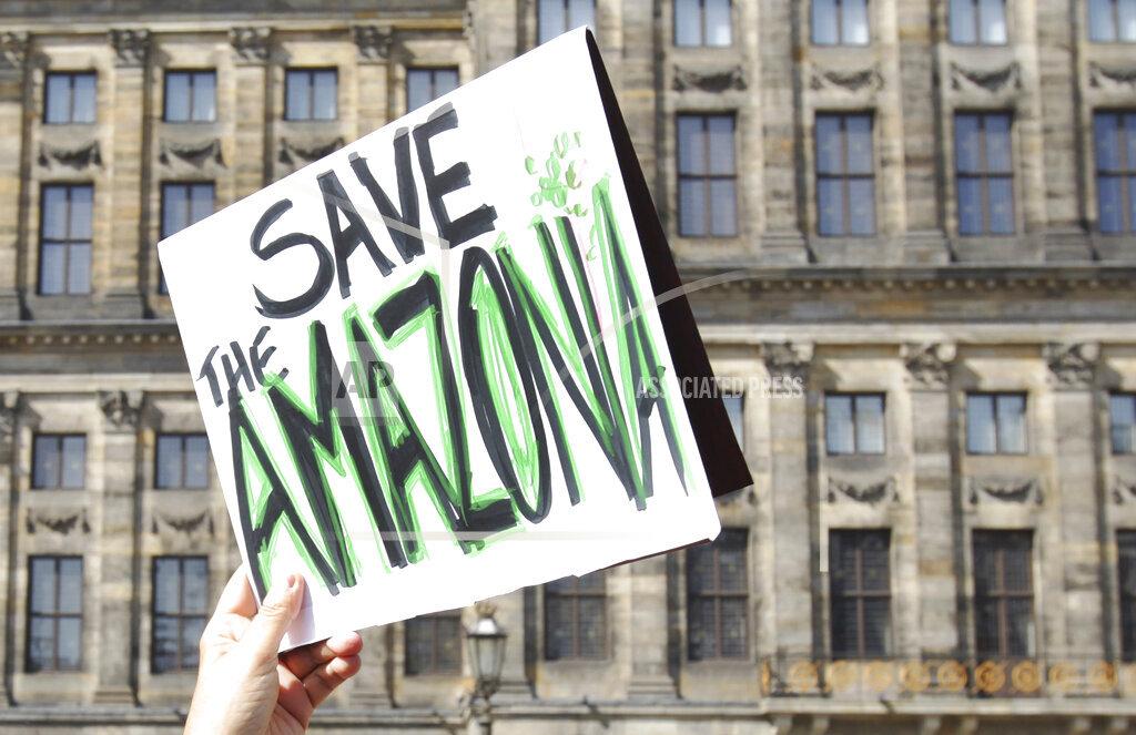 Demonstration Against Deforestation Of Amazon In Amsterdam