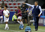 England head coach Philip Neville, right, gestures during the Women's World Cup Group D soccer match between Japan and England at the Stade de Nice in Nice, France, Wednesday, June 19, 2019. (AP Photo/Claude Paris)