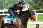 Belmont Stakes entrant Hot Rod Charlie takes a training run on the main track ahead of the 153rd running of the Belmont Stakes horse race, Wednesday, June 2, 2021, at Belmont Park in Elmont, N.Y. (AP Photo/John Minchillo)