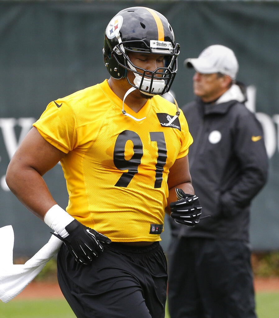 Stephon Tuitt, Dick LeBeau