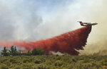 FILE — In this July 5, 2017 file photo an air tanker drops retardant near homes to protect them from a wildfire in the Palomino Valley, near Reno, Nev. The Center for Biological Diversity filed a lawsuit, under the Freedom of Information Act in Reno this week, Friday, Aug. 13, 2021,  against the U.S Bureau of Land Management accusing federal land managers of illegally withholding information about environmental assessments used to justify plans to create fuel breaks to slow wildfires by clearing forests and shrubs across rangeland six western states.(Jason Bean/The Reno Gazette-Journal via AP)