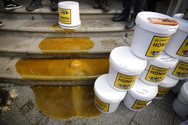 The steps of the German agriculture ministry are poured with contaminated honey during a demonstration of beekeepers against the use of Glyphosate-based herbicides in agricultural in Berlin, Germany, Wednesday, Jan. 15, 2020. (AP Photo/Markus Schreiber)