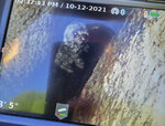 This photo provided by New York State Parks on Wednesday, Oct. 13, 2021, shows a 12-year-old dog named Liza being viewed on a plumbing camera in a crevice in Kerhonkson, N.Y. A dog trapped for five days deep inside a narrow, rocky crevice at a state park north of New York City was rescued unharmed — though it was hungry and thirsty, parks officials said Wednesday. (New York State Parks via AP)