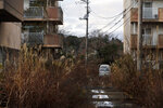 Weeds grow in an abandoned apartment complex Tuesday, Dec. 3, 2019, in Futaba, Fukushima prefecture, Japan. Government officials say it's