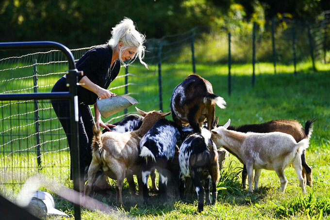 Jacqueline Evans, whose property in Hunterdon County, New Jersey, stands along the proposed pathway for the PennEast Pipeline, feeds her goats at her home in Delaware Township, N.J., Monday, Sept. 27, 2021. Construction of a nearly 120-mile-long (193 kilometer) proposed natural gas pipeline from northeastern Pennsylvania to central New Jersey will not go forward, the group behind the project said Monday. PennEast Pipeline Company, which won a recent legal battle against New Jersey at the Supreme Court, nonetheless said the state has failed to provide certain permits and is putting the project on ice. (AP Photo/Matt Rourke)