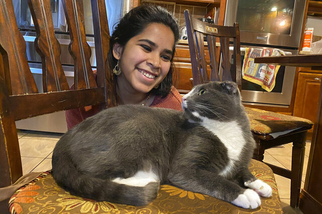 "In this photo provided by Raghav Ranjan, Devika Ranjan smiles at her cat, Aloo, on Dec. 13, 2020, in Andover, Mass. Ranjan, a theater director in  Chicago, wanted pandemic company and got a rescue cat she named Aloo during the summer. The formerly feral cat is believed to be around 3, and seems to be very comfortable with a slow-paced, high-attention pandemic life. ""My working from home, I think he loves it,"" she says. ""I think he is just ready to settle down in life. If he were human, he'd probably sit on the couch with a PBR (beer) and watch TV all day."