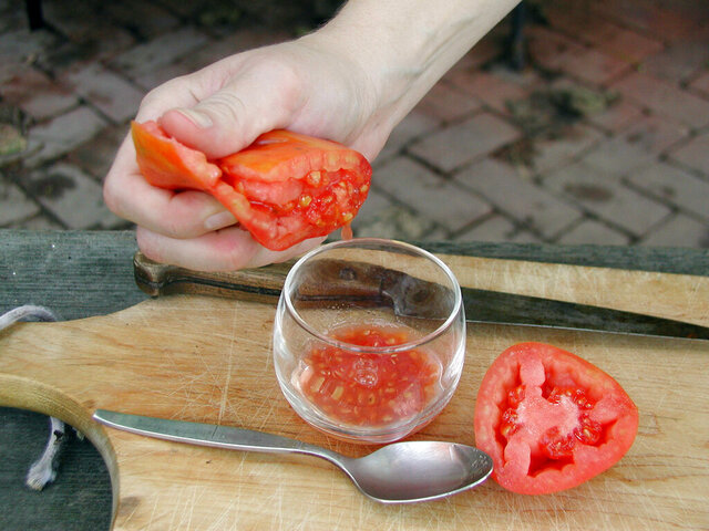 This undated photo shows seed being saved from a tomato in New Paltz, N.Y. Cutting a tomato in half and squeezing the seeds into a glass or a jar is the first step to having your home-grown seeds for next year's tomatoes. (Lee Reich via AP)