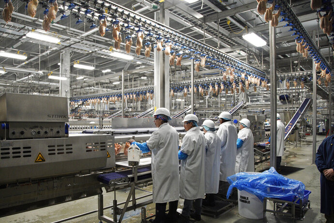 FILE - In this Dec. 12, 2019, file photo workers process chickens at the Lincoln Premium Poultry plant, Costco Wholesale's dedicated poultry supplier, in Fremont, Neb. On Friday, Jan. 17, 2020, the Federal Reserve reports on U.S. industrial production for December. (AP Photo/Nati Harnik, File)