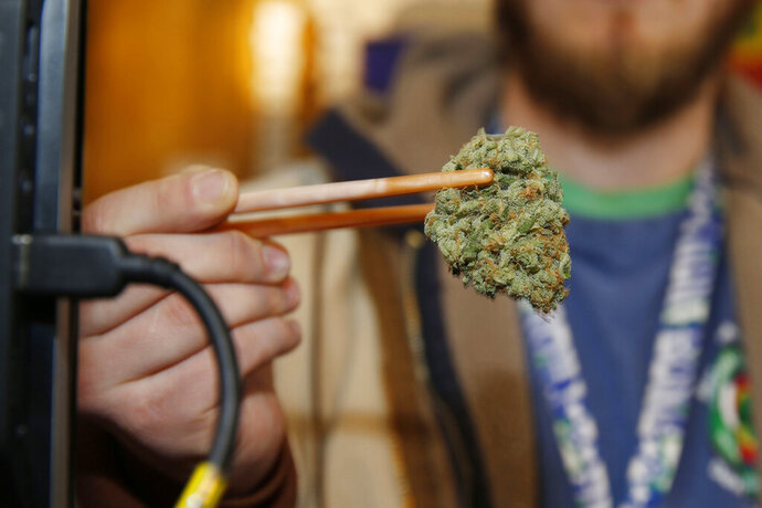 FILE - In this Dec. 19, 2014 file photo, a sales associate uses a pair of chopsticks to hold a bud of Lemon Skunk, the highest potency strain of marijuana available at the dispensary in Denver. According to research released on Tuesday, March 19, 2019, scientists say smoking high-potency marijuana every day could increase the chances of developing psychosis by about five times.(AP Photo/David Zalubowski, File)