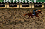 Belmont Stakes hopeful Hofburg works out on the main track at Belmont Park, Friday, June 8, 2018, in Elmont, N.Y. Hofburg is one of 10 horses racing in the 150th running of the Belmont Stakes horse race on Saturday. (AP Photo/Julie Jacobson)
