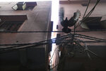 A pigeon flies near tangled electrical wires in a narrow alley which houses a building that caught fire on Sunday in New Delhi, India, Monday, Dec. 9, 2019. Authorities say an electrical short circuit appears to have caused a devastating fire that killed dozens of people in a crowded market area in central New Delhi. Firefighters fought the blaze from 100 yards away because it broke out in one of the area's many alleyways, tangled in electrical wire and too narrow for vehicles to access. (AP Photo/Manish Swarup)