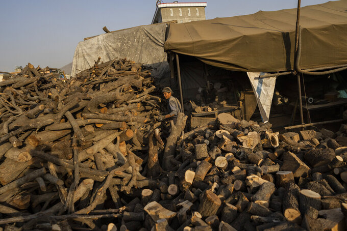 Afghan labourers cut logs to be sold as firewood in Kabul, Afghanistan, Monday, Sept. 20, 2021. (AP Photo/Bernat Armangue)